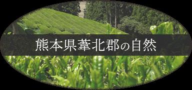 熊本県葦北郡の自然